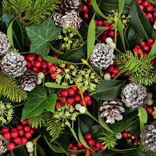 winter flowers and berries